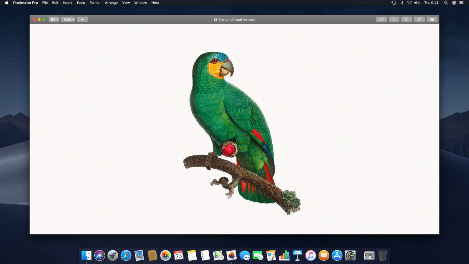 Quickly Remove A Solid Color Background From An Image Pixelmator Pro Tutorials